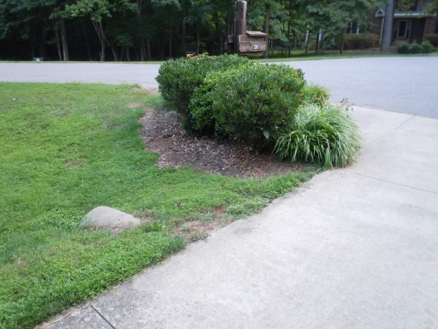 Mailbox side of driveway before