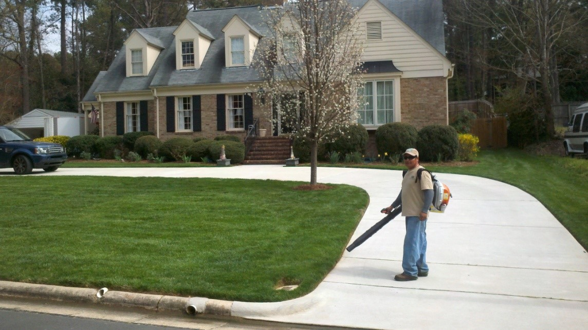 Full lawn maintenance plans for Garden maintenance plan